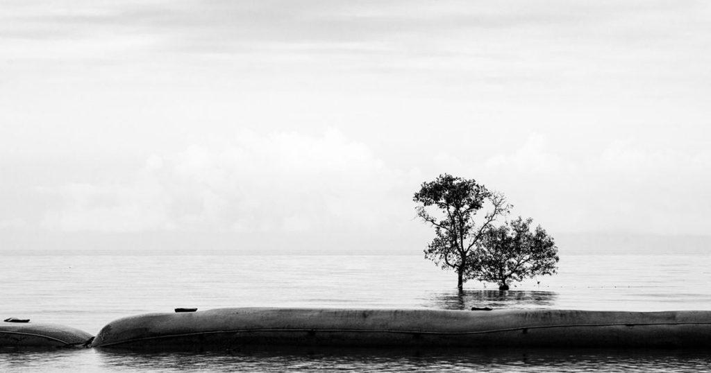 pantai kelanang banting